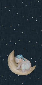 Panel for sleeping bag - Teddy bear on the moon