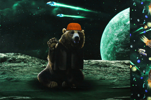 Panoramic panels jersey - bear in space